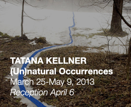 Tatana Kellner, <em>(Un)natural Occurrences</em>